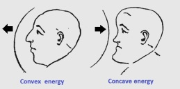 convex concave