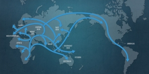 Primary migrations of the human race