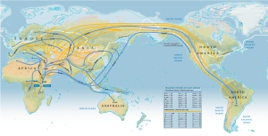 Migrations after 7 years of DNA collections