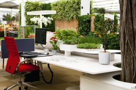 green-desk-biophilic-designs