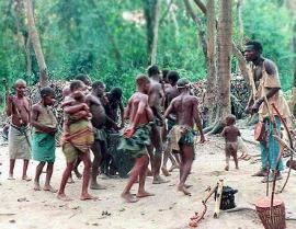 mbuti_families