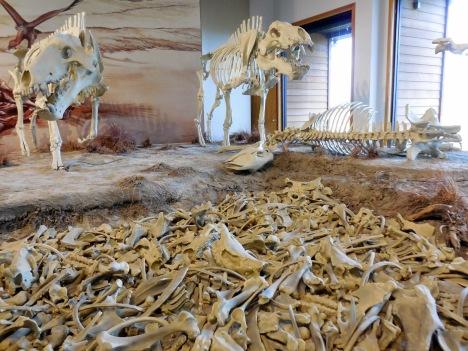 Agate Fossils Bed - Nebraska