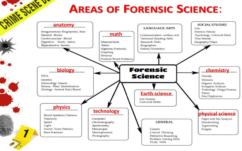 Forensic science disciplines