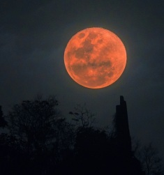 blood moon small